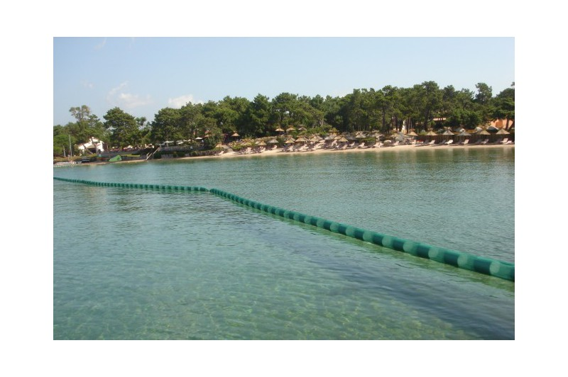 Anti jellyfish net